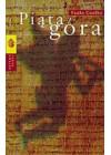 PIATA GORA